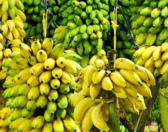 Банан - экзотический фрукт