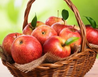 Где купить яблоки оптом